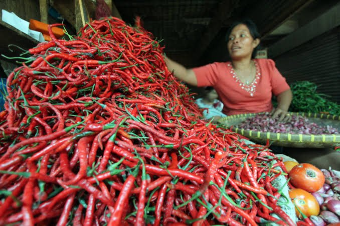 Awal Pekan ini Harga Cabe Merah di Pekanbaru Turun Hingga Rp6 ribu per kilogram